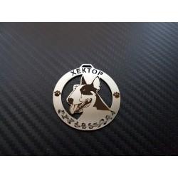 Бултериер / Bull Terrier